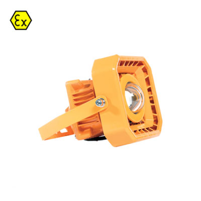 LED ATEX EXP Flood Light 80w