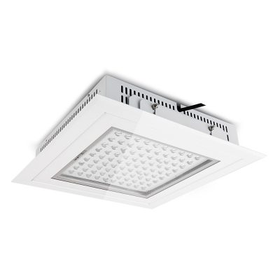 LED Canopy Light 100W