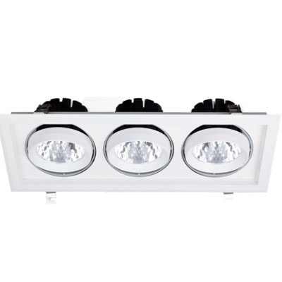 LED Rotatable Downlight 90W