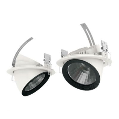 LED Rotatable Downlight 35W
