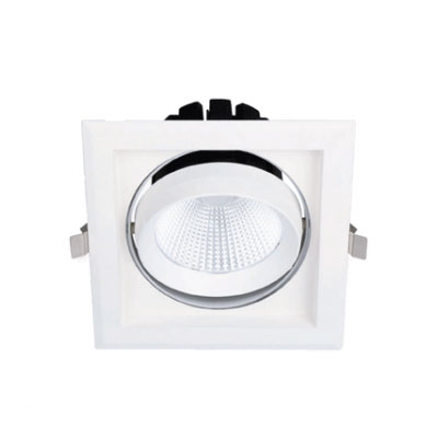 LED Rotatable Downlight 30W